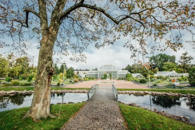 Kaisaniemen kasvitieteellisen puutarhan uudistaminen
